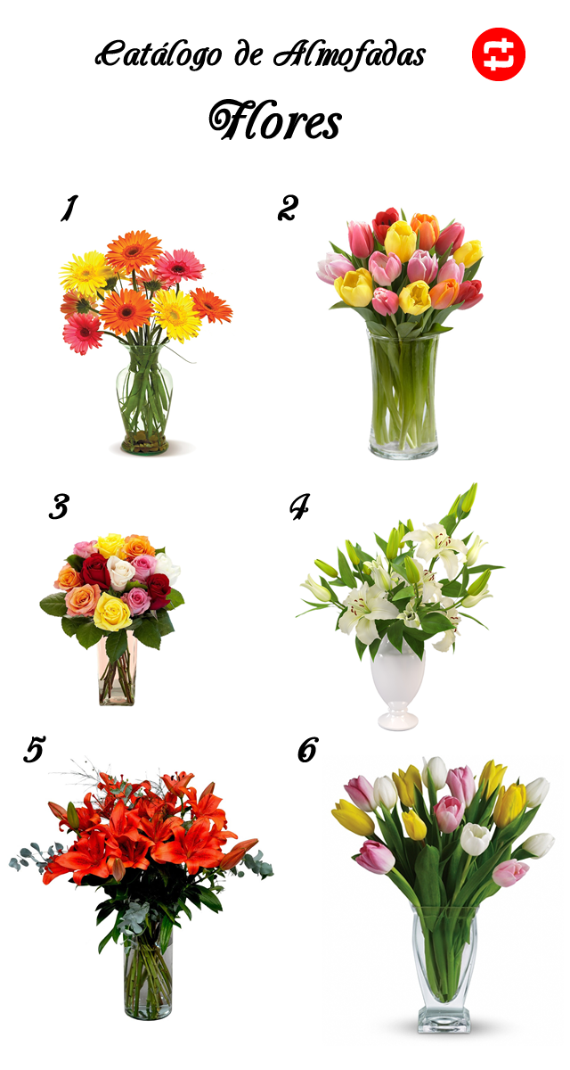 catálogo-flores