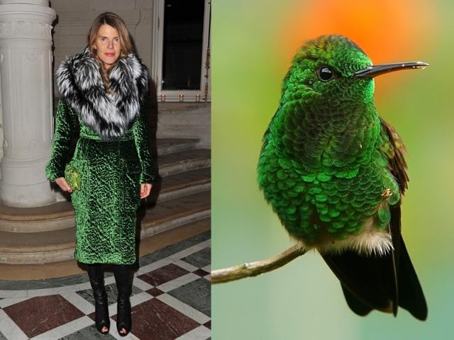 ana-dello-russo-like-a-bird-9