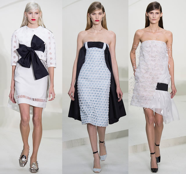 christian-dior-spring-2014-couture-6