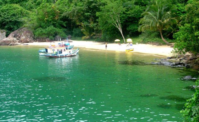 Feiticeira-ilha-grande