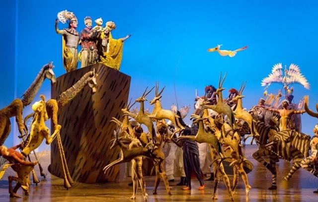teatro-o-rei-leão-1