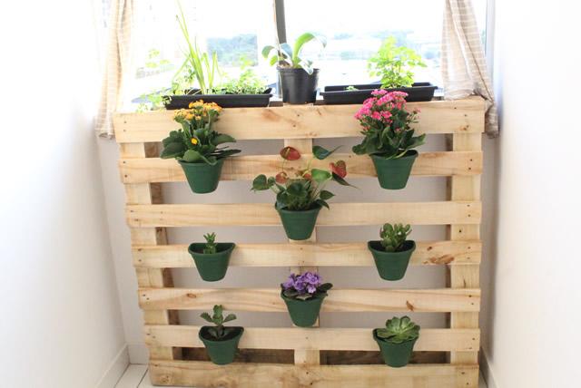 horta e jardim em apartamento:jardim-vertical-horta-apartamento-pallet (5)