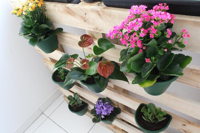 jardim-vertical-horta-apartamento-pallet (9)